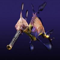 3d leafy sea dragon seadragon