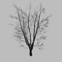 3ds max autumn tree
