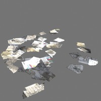 scattered papers 3d model