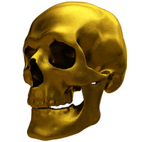 gold human skull 3ds