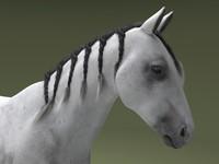 horse hair 3d max