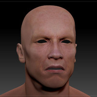 3d arnold head male man