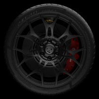 2014 Dodge Viper wheel with Pirelli Corsa Tire