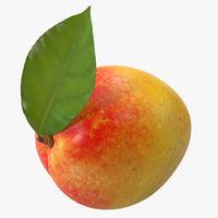 mango 4 3d model