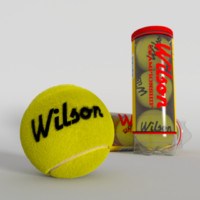 Tennis Balls plus Container