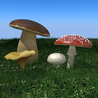 3d mushrooms agaricus bisporus model