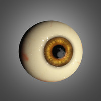 realistic eyeball 3d model