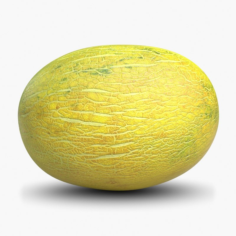 Melon-1chk247.jpg