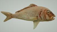 3d obj prehistoric fish