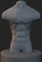 male human torso obj