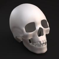 3d max human skull