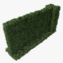 wall with ivy 3D models