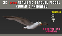 3d obj seagull animation fully rigged