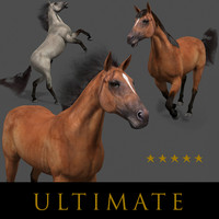3d horse animations tail model