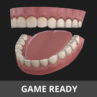 3d teeth tongue model