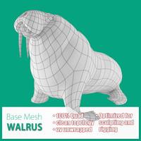 max base mesh walrus