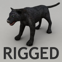 maya rigged panther