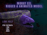 Moray Eel Realistic 3D Model Rigged Animated