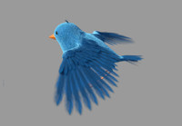 bird rigged fur 3d ma