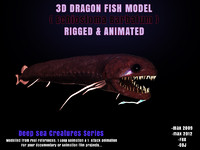 Dragon Fish 3D Model Rigged & Animated (Echiostoma Barbatum)