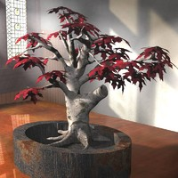 obj red maple bonsai tree