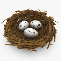 3d model bird nest
