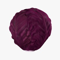3d model red cabbage