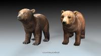 baby bear max