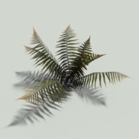 prop autumn fern obj free