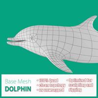 base mesh dolphin 3d model