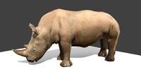 maya rhinoceros rhino