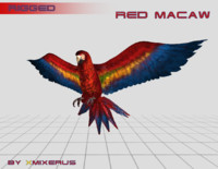 macaw rigged 3d model