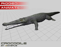 3d model crocodile rigged
