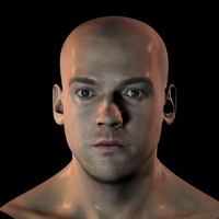 3d male head face character model