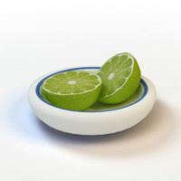3d sliced lime model
