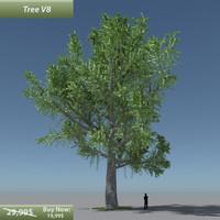tree oak v8 obj