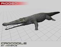3dsmax realistic crocodile rigged