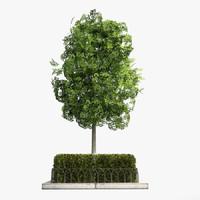 3d tree planter street