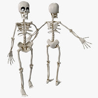 maya cartoon skeleton rigged