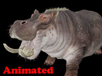 hippopotamus animal rigged 3ds