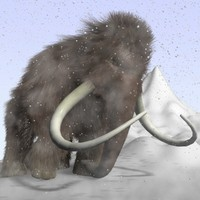 maya cartoon mammoth rigged