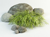 max grass landscape