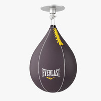 3ds max punching bag