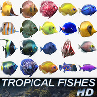 3d tropical fishes