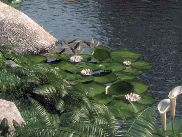 Water_Lily.png