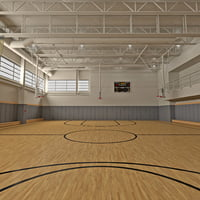 basketball gym max