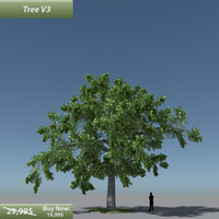 3d model tree oak v3