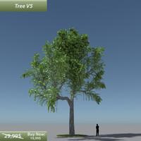 tree oak v5 3d model