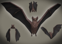 bats pack animations 3d model