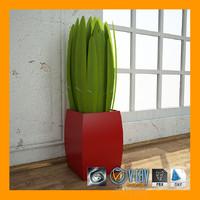 interior plant 2 3d model